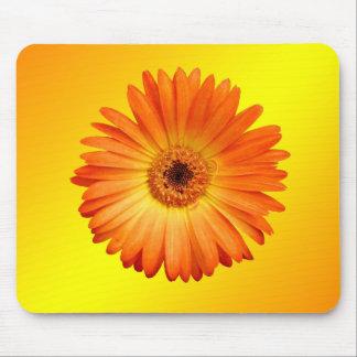 Schönes orange und gelbes Gerbera-Gänseblümchen Mousepad