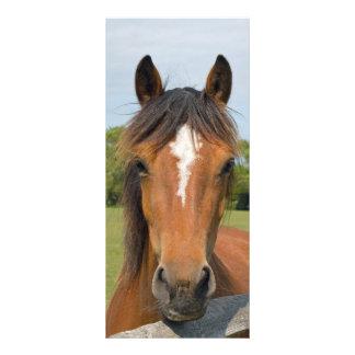 Schönes Pferdekopf-Lesezeichen, Geschenkidee Werbekarte