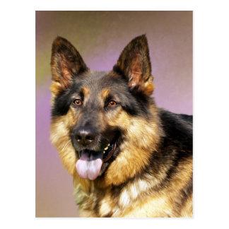 Schönes Schäferhundhundeporträt Postkarten