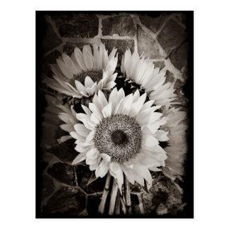 Schönes Sonnenblume-Blumenstrauß-Foto in Schwarzem Postkarte