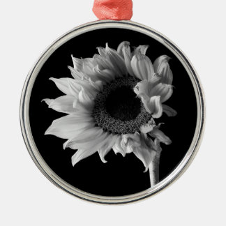 Schönes Sonnenblume-Porträt in Schwarzweiss Rundes Silberfarbenes Ornament