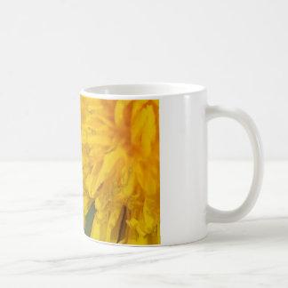 Schönes Unkraut: Löwenzahn Kaffee Tassen