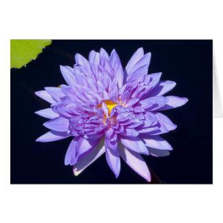 Schönes Wasser-Lilien-BlumenFoto Karte