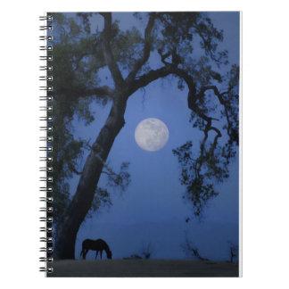 Schönes zapfendes Notizbuch-Pferd, Eichen-Mond Notizblock