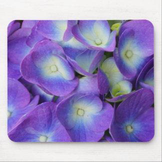 Schönheit eines blauen Hydrangea Mousepad
