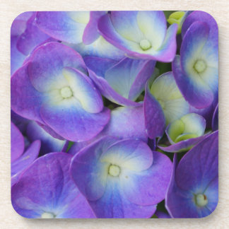 Schönheit eines blauen Hydrangea Untersetzer
