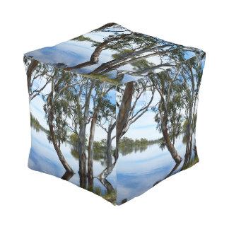 Schönheit eines Gummi-Baums, Riverland Australien, Kubus Sitzpuff