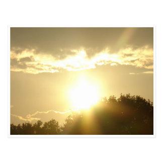 Schönheit in einem Sonnenaufgang Postkarte