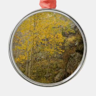 Schönheit und das Tier Silbernes Ornament