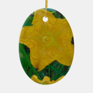Schönheit vor dem Kürbis Ovales Keramik Ornament