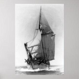 Schooner-Z.B. Weiß Poster
