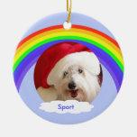 Schoßhund-Erinnerungsweihnachtsverzierung - Regenb