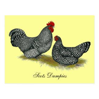 Schotte-pummelig Hühner Postkarte