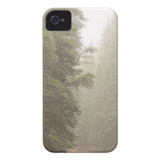 Schotterweg-Herausforderung in den Nebel iPhone 4 Hülle