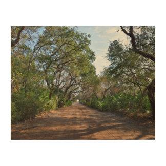 Schotterweg-Hintergrund Holzwanddeko
