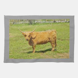 Schottische Hochland-Kuh auf dem Bauernhof-Gebiet Handtuch