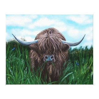 Schottische Hochland-Kuh-Malerei Gespannte Galerie Drucke