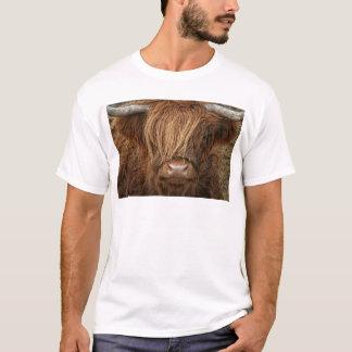 Schottische Hochland-Kuh - Schottland T-Shirt