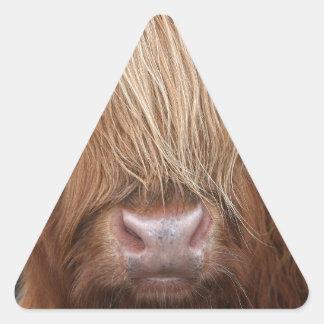 Schottische Hochland-Kühe - Schottland Dreiecks-Aufkleber