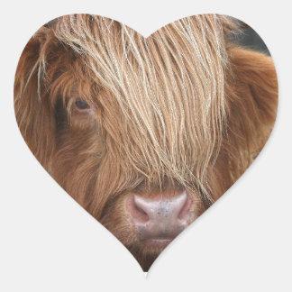 Schottische Hochland-Kühe - Schottland Herz-Aufkleber