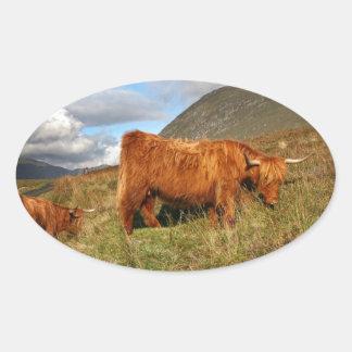 Schottische Hochland-Kühe - Schottland Ovaler Aufkleber