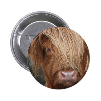Schottische Hochland-Kühe - Schottland Runder Button 5,7 Cm