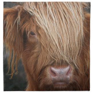 Schottische Hochland-Kühe - Schottland Serviette