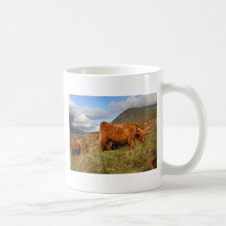 Schottische Hochland-Kühe - Schottland Tasse