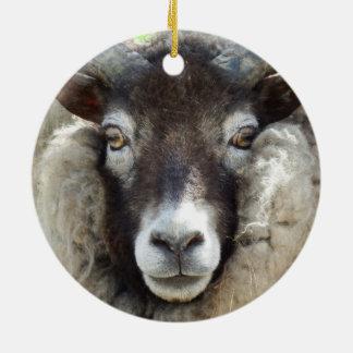 Schottische Schaf-nahes hohes Keramik Ornament