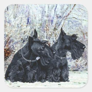 Schottische Terrier in der Winterzeit Quadratischer Aufkleber