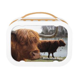 Schottischer Hochland-Vieh ~ Lunchbox