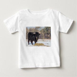 Schottischer Hochländerstier, der Heu im Baby T-shirt