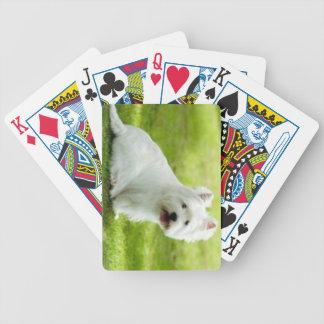 schottischer Terrier Bicycle Spielkarten