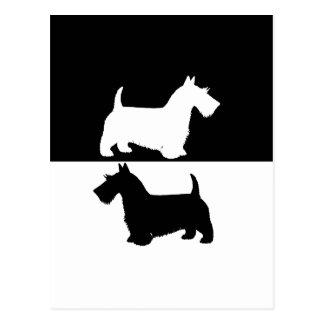 schottischer Terrier Postkarte