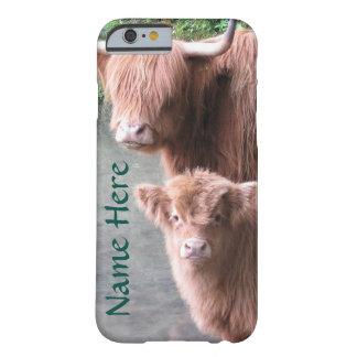 Schottisches Hochland-Vieh, Kuh und Kalb Barely There iPhone 6 Hülle