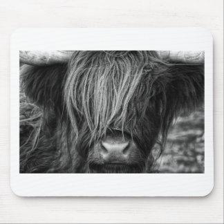 Schottisches Hochland-Vieh - Schottland Mauspad