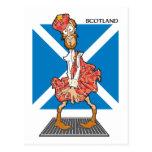 Schottland-Cartoon Postkarten