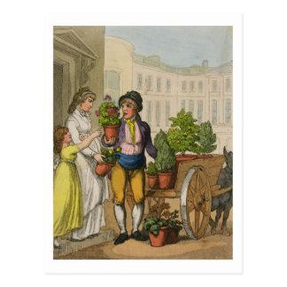 Schreie von London: Der Garten-Topf-Verkäufer, Postkarte