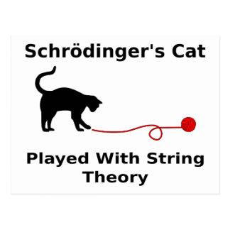 Schrödingers Katze gespielt mit Schnur-Theorie Postkarte