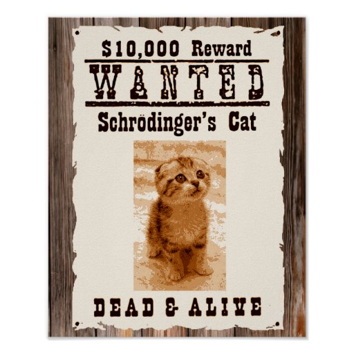 Schrodingers Katze wollte Plakat