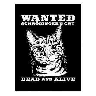 Schrodingers Katze wollten Tote oder lebendiges Postkarte