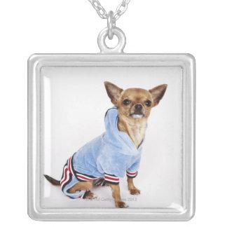 Schrulliges Porträt Teacup-Chihuahua 2 Versilberte Kette