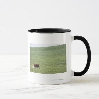 Schüchtern Sie das Weiden lassen in der Wiese, Tasse