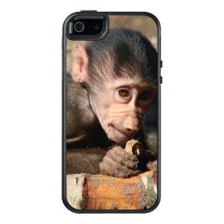 Schüchterner junger männlicher Hamadryas Pavian OtterBox iPhone 5/5s/SE Hülle