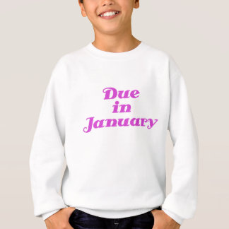 Schuld im Januar Sweatshirt