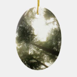Schützen Sie unsere Wälder Keramik Ornament