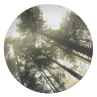 Schützen Sie unsere Wälder Teller
