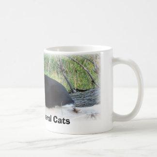 Schützen Sie wilde Katzen Kaffeetasse