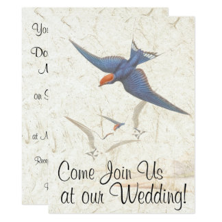 Schwalben-Vogel-Tier-Tiere, die Einladung Wedding