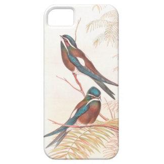 Schwalben-Vogel-Tier-Tiere iPhone 5 Cover